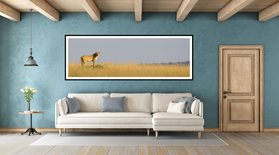 Buying and Selling Images